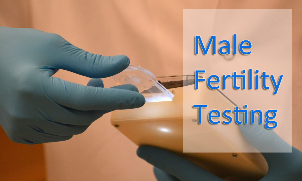 Male Fertility Testing- Best Guide To Know About Male Fertility