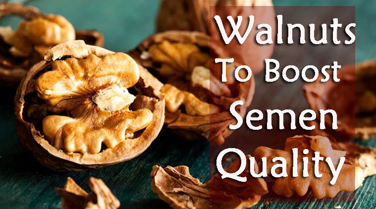 Walnuts To Boost Semen Quality and Sperm Count in Men