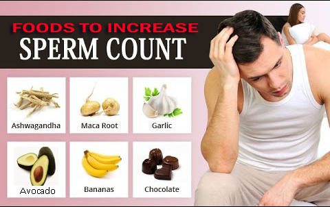 semen sperm and increase that Foods