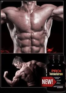 pro-testosterone2