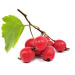 hawberry