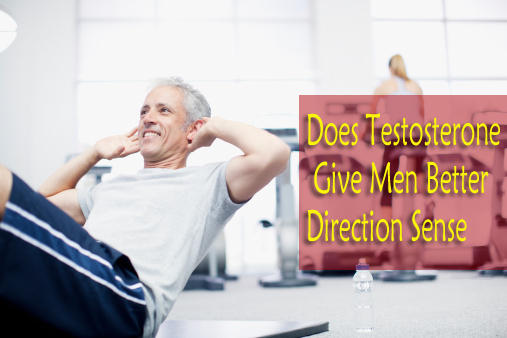 Does Testosterone Give Men Better Direction Sense
