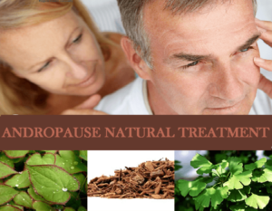 Everything You Need To Know About Andropause Natural Treatment