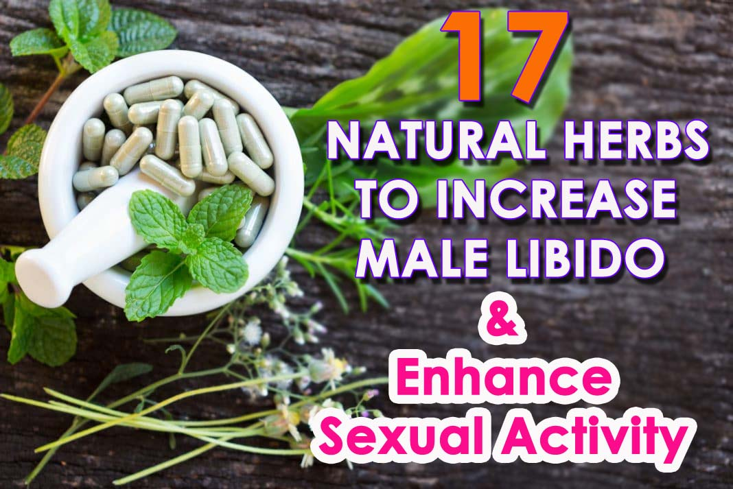 Herbs To Increase Male Libido
